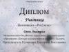 Диплом участника Друзь Анастасия